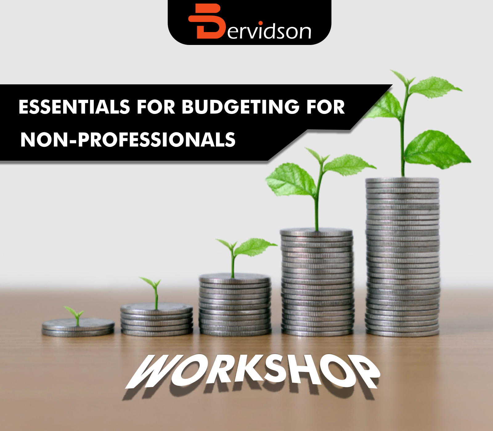 Essentials of Budgeting for Non-Professionals Workshop
